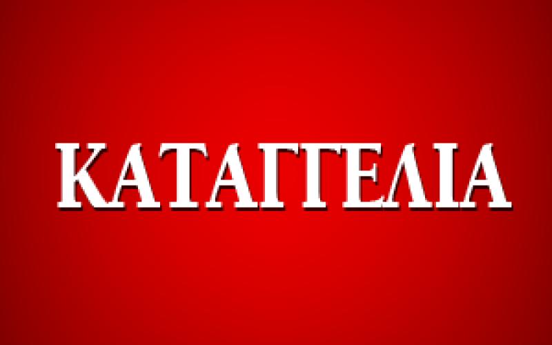 ΚΑΤΑΓΓΕΛΙΕΣ ΕΚΠΑΙΔΕΥΤΙΚΩΝ ΓΙΑ ΚΑΘΥΣΤΕΡΗΣΗ ΜΙΣΘΟΔΟΣΙΑΣ ΣΤΑ ΕΚΠΑΙΔΕΥΤΗΡΙΑ «ΠΑΛΛΑΔΙΟ» ΝΕΑΣ ΣΜΥΡΝΗΣ